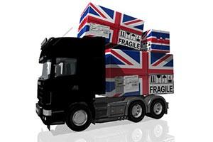 international-move-management